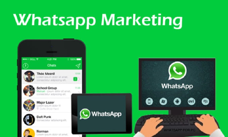 Como Desarrollar Una Campana De Marketing En Whatsapp En 5 Pasos